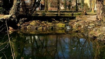 Naturpark / Full Hd Video