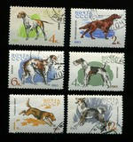 hunter dogs on USSR stamps