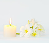 Aroma candle and frangipani flower, serenity concept poster