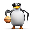 3d Penguin is a keen basketball player