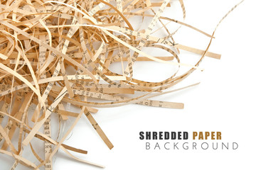 shreded book paper with isolated on white background