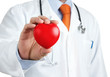 Doctor holding red rubber heart in hand