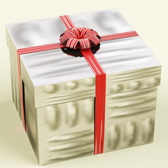 Silver Gift Box As Birthday Present For Woman