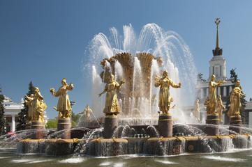 VVC, Main pavillion and fountain