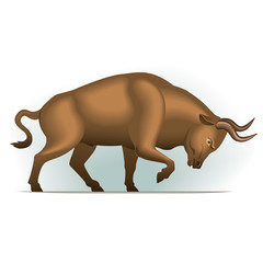 Bull vector illustration, financial theme