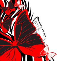 Red buterflies background