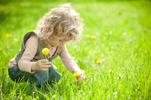Beautiful child picks flowers