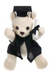 Toy Graduation Bear