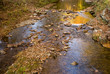 Autumn Creeks
