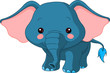 Fun zoo. Elephant
