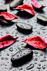 pietra nera con gocce d'acqua e petali rossi