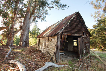 Old Ruined Cabin
