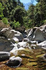 Stream on Corsica