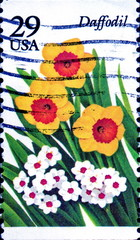 Daffodil. Flowers. US Postage.