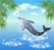 Dolphins leaps from water