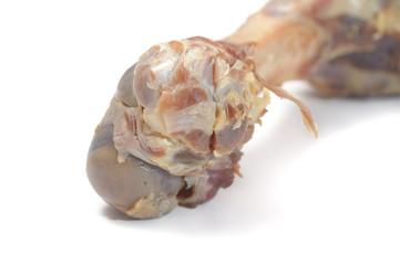 meat bone