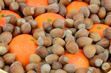 Closeup for hazelnuts and mandarins