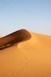 Merzouga desert - Marocco - 38212025