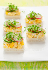 canape with egg, cucumber, radishes and cress