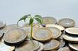 Geld, Euro, Muenzen, Wachstum, Oekologie, Vermehrung, Rendite