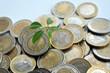 Geld, Euro,  Pflanze, Wachstum, Oekologie, Vermehrung, Rendite