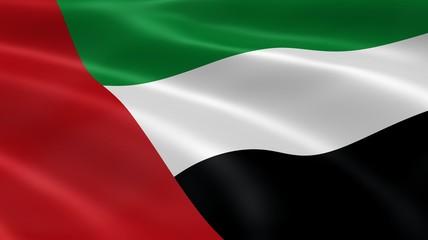 Emirati flag in the wind