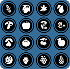 blue  signs. fruits and vegetables set . fruits icons.