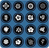 blue  signs. silhouettes of flowers set. flowers icons.