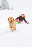 Golden Retriever Dog pulling a child on a snow sled