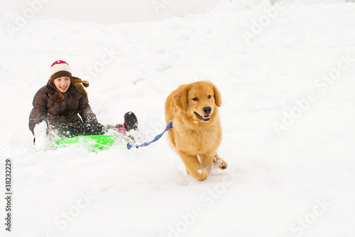 golden retriever pulling young kid on a snow sled