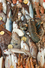 Fresh seafood background