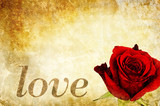 love rose card