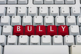 Bullying on the Internet poster