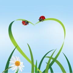 Liebe | Natur | Grass | Marienkäfer |