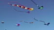 Kites flying against blue sky
