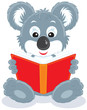 Koala cub reading a red book