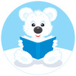 Polar bear cub reading a blue book