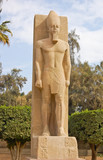 Standing statue of Ramses II in Memphis, Egypt poster