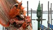 masked person in orange in front of venezian gondolas