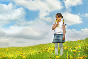 Little girl with pigtails holding dandelions