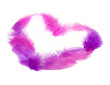 Heart in pink feathers. Soft focus.
