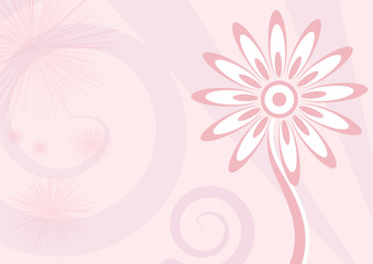 Background Fiore rosa