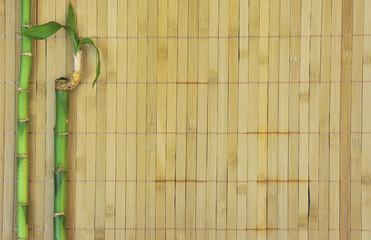 Bambusmatte mit Bambus