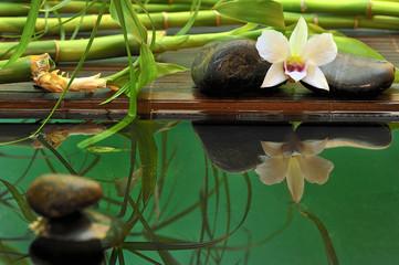 Wellness Orchidee Spiegelung
