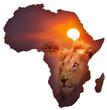 Fototapeten,afrika,landkarte,wildlife,entwerfen