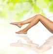 healthy sexy slender female legs over green natural background