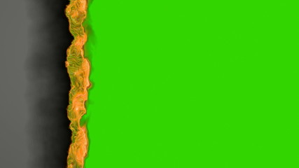 fire on green screen (HD 1080, 30fps, loop, 3d)