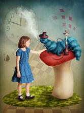 Alice et Caterpillar