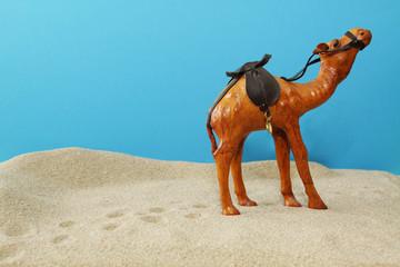 Dromedar in der Wüste