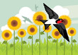 Birds flying in yellow sunflowers landscape background